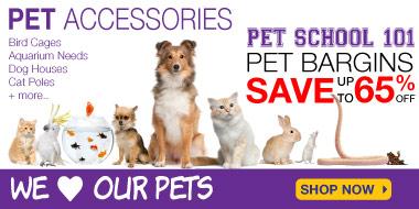 Pets Sale